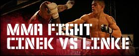 krav maga fight